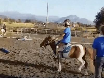 Kids Pony lessons