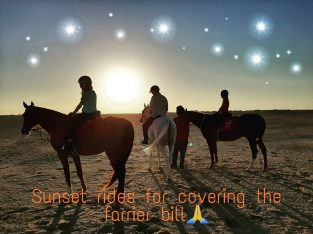 Sunset Rides and natural horsemanship