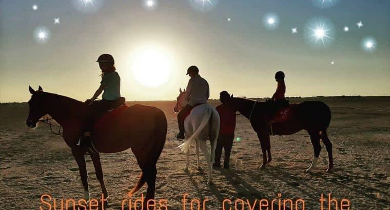 Sunset Rides and natural horsemanship