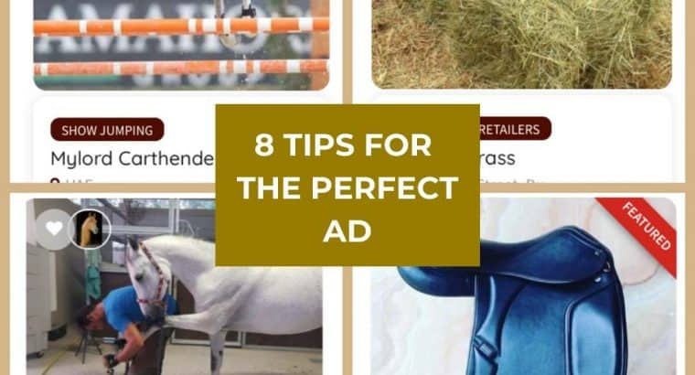 Tips for the perfect ad
