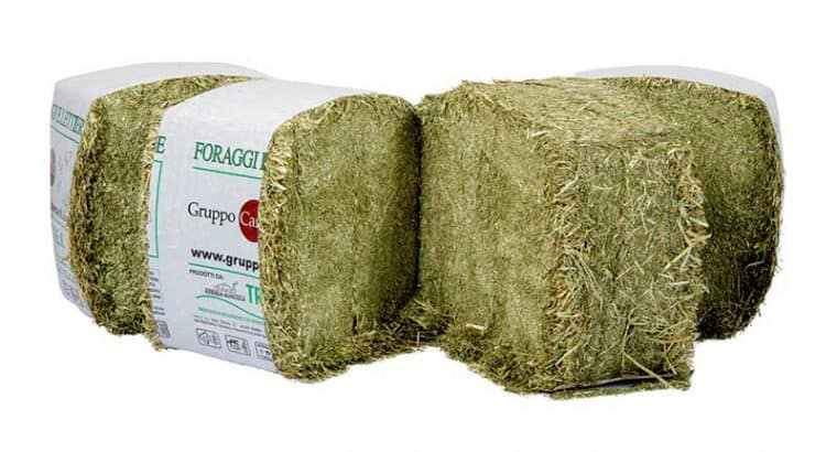 Italian hay for equine nutrition
