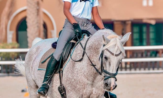 MRM Equine Photography ?✨