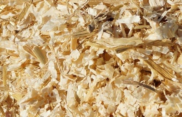 Wood shavings- Sawdust sale Dubai