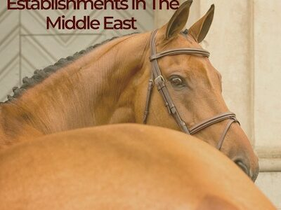 Top 6 Equestrian Establishments In The Middle East