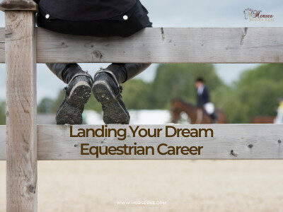 Landing your dream role in the Equestrian World – An overview of equine careers