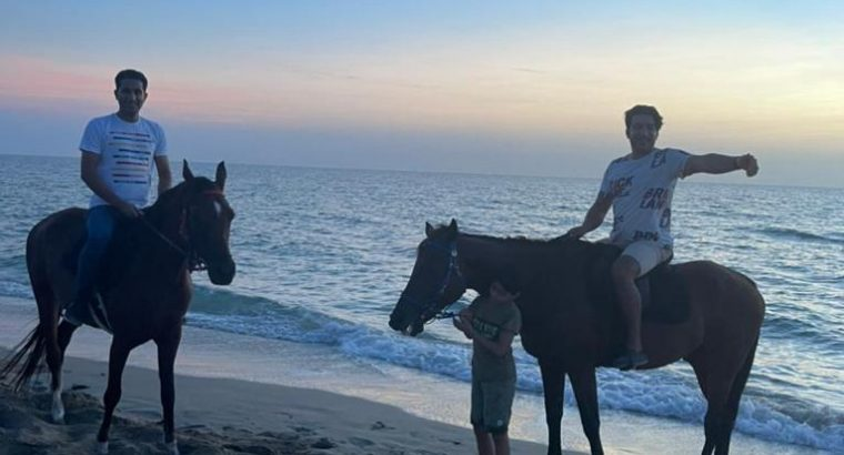 Private horse back riding lessons